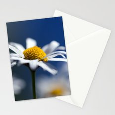 Marguerite Daisy3609 Stationery Cards