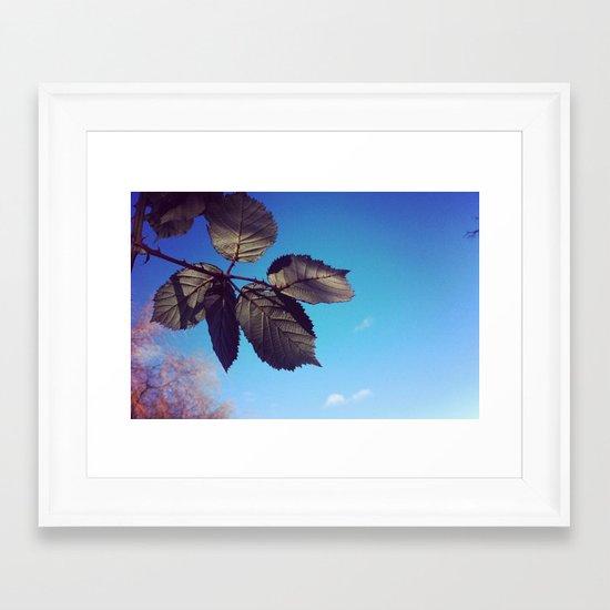 Leaves-Autumn Framed Art Print
