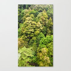 Itsukushima Forest Canvas Print