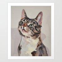 Kitten / Cat Art Print