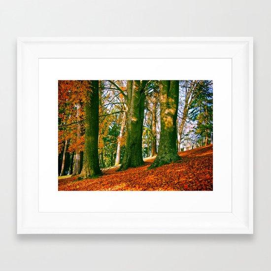 Autumn park hill Framed Art Print