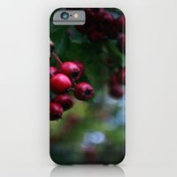 Pyracantha iPhone 6 Slim Case