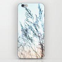 Colors In Nature Macro iPhone & iPod Skin