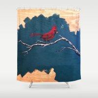 Cheep Shower Curtain