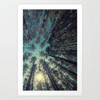 Pine Grove Art Print