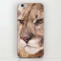 Cougar I iPhone & iPod Skin