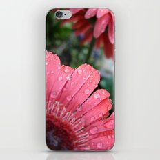 In The Morning iPhone & iPod Skin