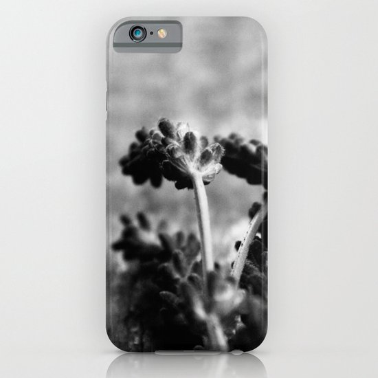 Lavender (Black & White) iPhone & iPod Case