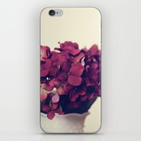 Each Day iPhone & iPod Skin