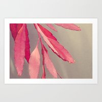 Red Cactus Art Print
