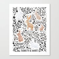 Rabbits and Hares Field Guide Canvas Print