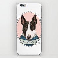 Bull Terrier iPhone & iPod Skin