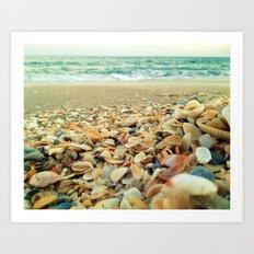 Shore and Shells Art Print