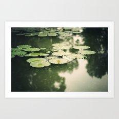 lilypads Art Print