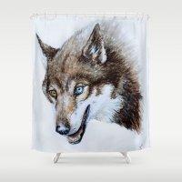 Heterocromia wolf Shower Curtain