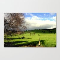 Follow the fence Line Canvas Print