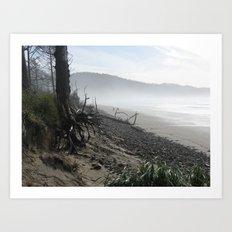 Misty Morning Walk Art Print