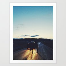 Bison in the Headlights Art Print