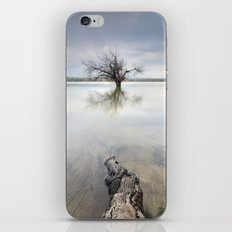 Roots and trees... iPhone & iPod Skin