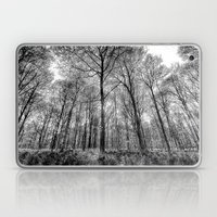The Forest Sketch Laptop & iPad Skin