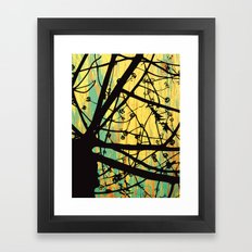 Coots Series 1 of 4 Framed Art Print