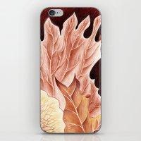 Platycerium iPhone & iPod Skin