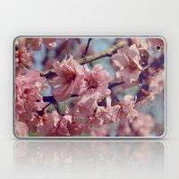 Sakura... One Spring in Beijing Laptop & iPad Skin