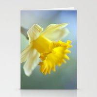 Daffodil 9909  Stationery Cards