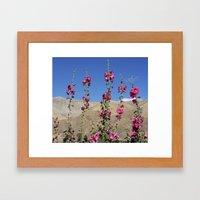 Himalayan Blossoms Framed Art Print