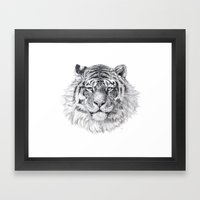 Tiger G003 Framed Art Print