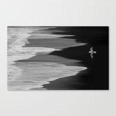 Wings Canvas Print