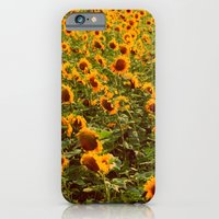 iPhone & iPod Case featuring Fields of gold by Julia Kovtunyak