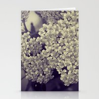 Nature in Black and White -- Botanical Still Life -- Yarrow Flowers Stationery Cards
