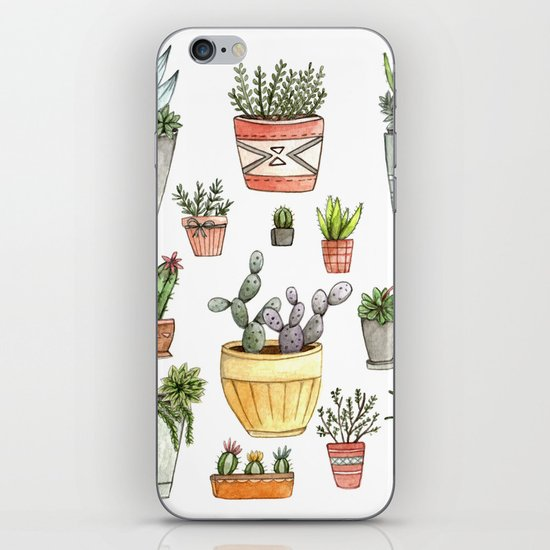 Potted Succulents iPhone & iPod Skin