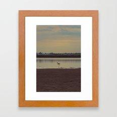 LONELY FLAMINGO Framed Art Print