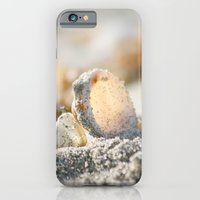 iPhone & iPod Case featuring A Shell by ArtsyCanvasGirl Designs