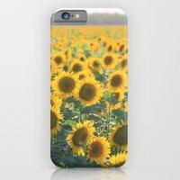 iPhone & iPod Case featuring Field of Sunshine by Jillian Schipper