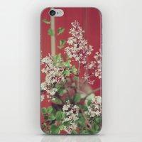 Dainty iPhone & iPod Skin