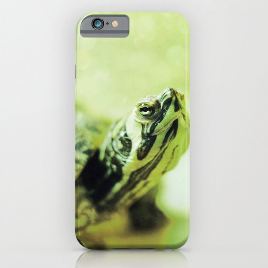 Turtle iPhone & iPod Case