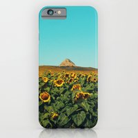 Sunflower Scene iPhone 6 Slim Case