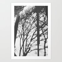 Tree Shadows - Solarized Art Print