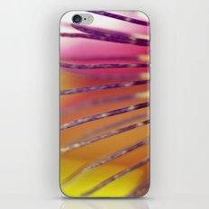 Starburst iPhone & iPod Skin