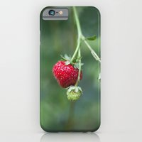 Red Ripe Strawberry iPhone 6 Slim Case