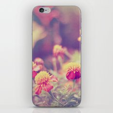 Retro Vintage style - flowers iPhone & iPod Skin