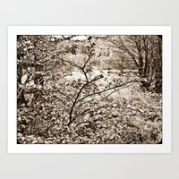 In Nature. Art Print