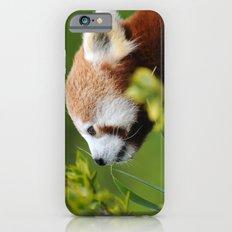 Red Panda 1 iPhone 6 Slim Case