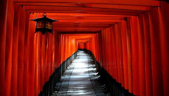 Fushimi Inari Path, Kyoto Canvas Print