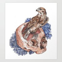 Hawk and Skull Art Print