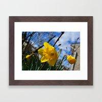 Yellow Flowers Blue Sky Framed Art Print