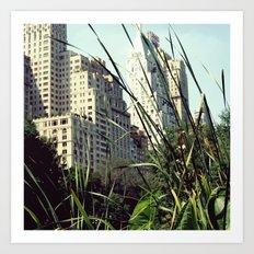 Central Park View Art Print
